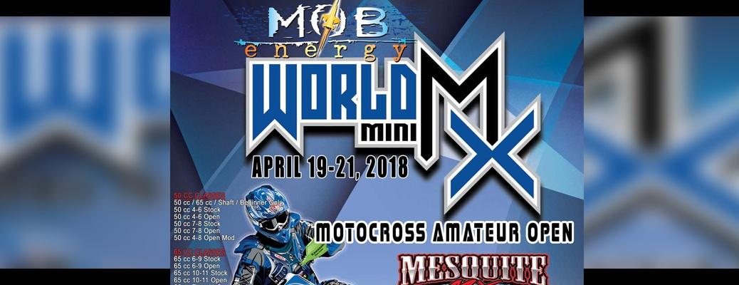 WORLD MINI MX MOTOCROSS AMATEUR OPEN