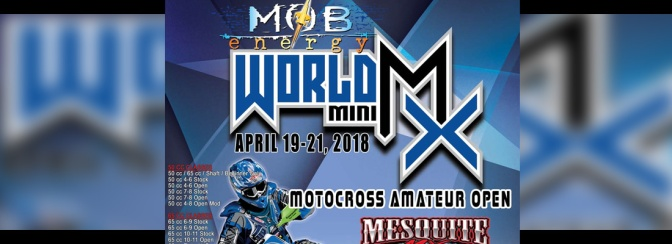 The 2018 World Mini MX Flyer